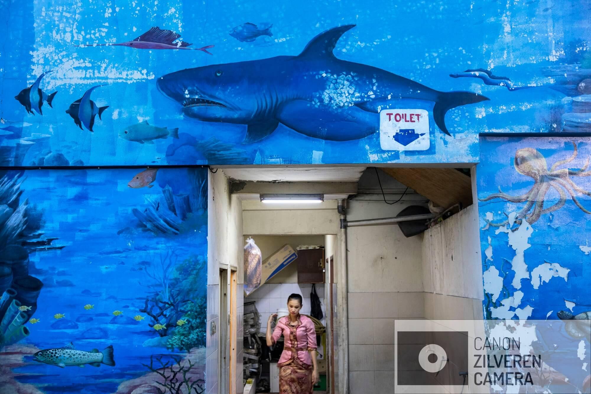 Jakarta zinkt snel, tussen 10-25 centimeter per jaar. Wanneer niets wordt gedaan zal de stad over 20-3- jaar voor een derde permanent onder water staan. Veel water gerelateerde problemen worden toegeschreven aan klimaatverandering en de verwachte zeespiegelstijging die daarmee samenhangt. Bodemdaling is onbekend en zal de absolute zeespiegelstijging tot een factor 10 overschrijden. Jakarta vertrouwd op een oude zeewering om de stad te beschermen tegen zee. Echter door bodemdaling zinkt deze muur snel weg in de grond en biedt weinig bescherming tegen het water. Zware regenval en een hoge rivierwater stand zorgen nu al voor problemen: de stad is veranderd in een omgekeerd aquarium. De zee is niet meer het laagste punt, het water kan nergens meer heen.Veel Jakartanen hebben geen sanitatie thuis. Ze maken hiervoor gebruik van de rivieren en zijn aangewezen op de zgn  ÔMCKÕ: Mandi, Cuci, Kakus, vertaald bad, wassen en toilet. Bij overstromingen veranderd de stad in een open riool. Serie gemaakt tussen 2015 en 2018