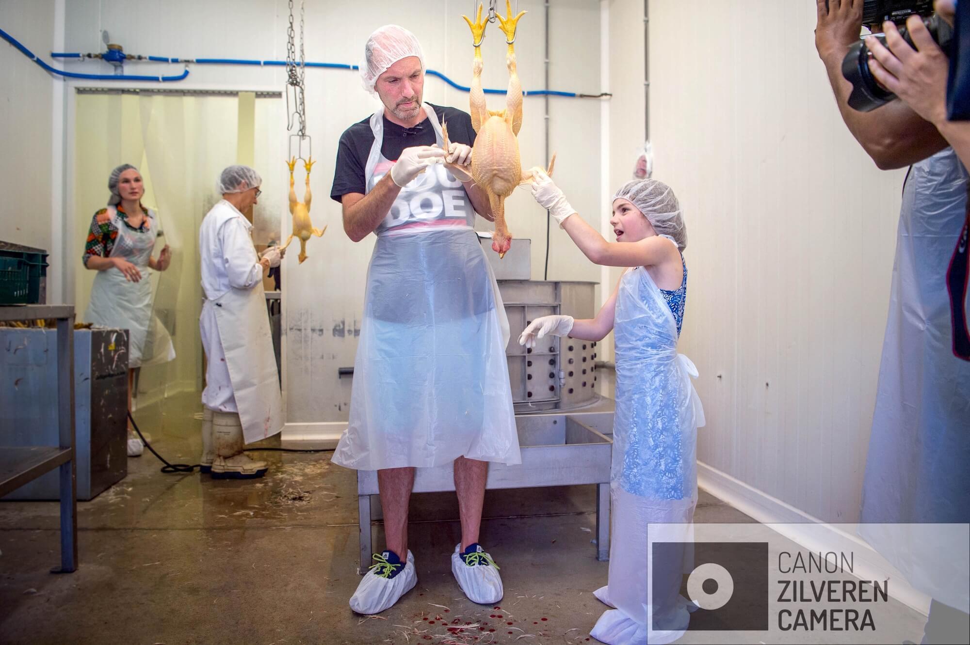 20-06-2018. Hoeven. De laatste fase van het Doehetzelf kip, het slachten. Jeroen heeft zelf de kip geslacht samen plukken ze hun kip kaal.