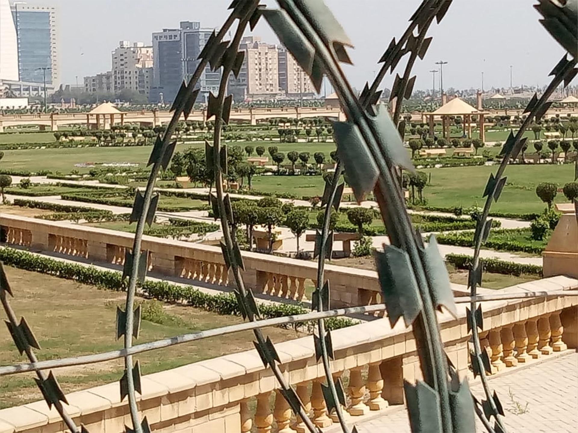 Abba-Grass-2-12x16cm