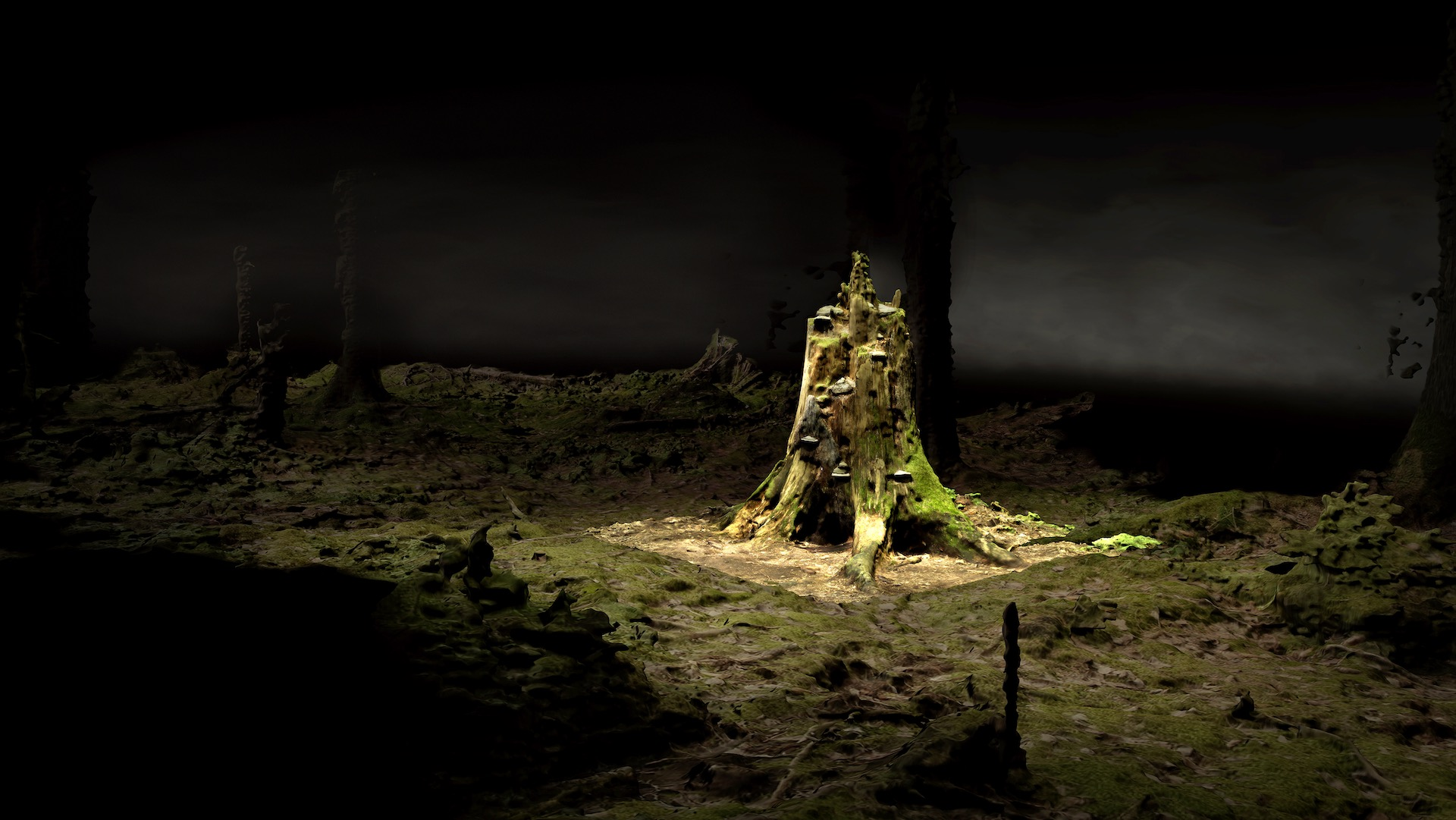 ForestOnLocation_BroersenLukacs_OldGrowth02_videostill_Courtesy-Akinci-and-the-Artists_BG_MED_NW